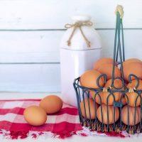 Conservation œuf dur: tout savoir
