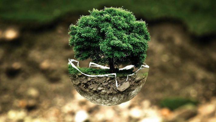 Où trouver des produits éco-responsables ?
